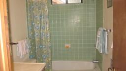 1 shower